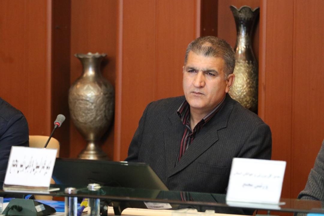 رضا صابونچی: توسعه قایقرانی در گرو برگزاری لیگهای قوی است